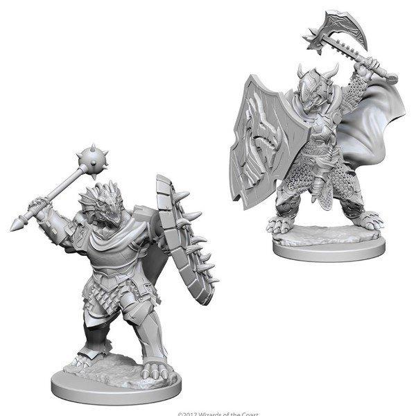 Dragonborne Male Paladin