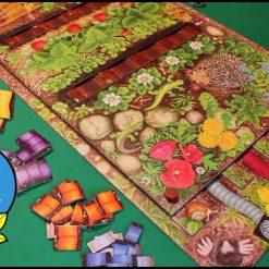 corsa-dei-lombrichi-fun-kids-bambini-gioco-da-tavola-2